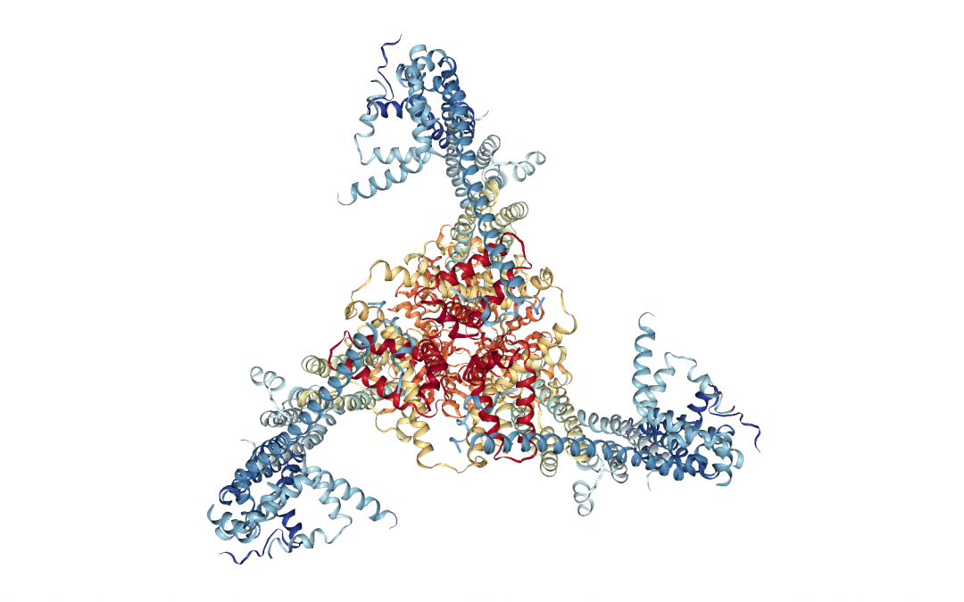 Researcher of the CCG is Part of the International Consortium that will Decrypt the Human Proteome