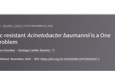 "Acinetobater baumannii multidrogo resistente es un problema de ""una salud"""